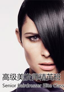 高级发型师精英班